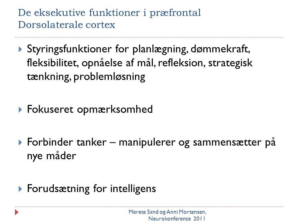 De eksekutive funktioner i præfrontal Dorsolaterale cortex