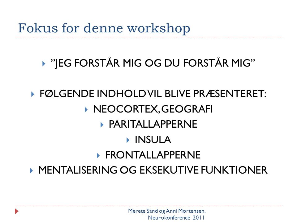 Fokus for denne workshop