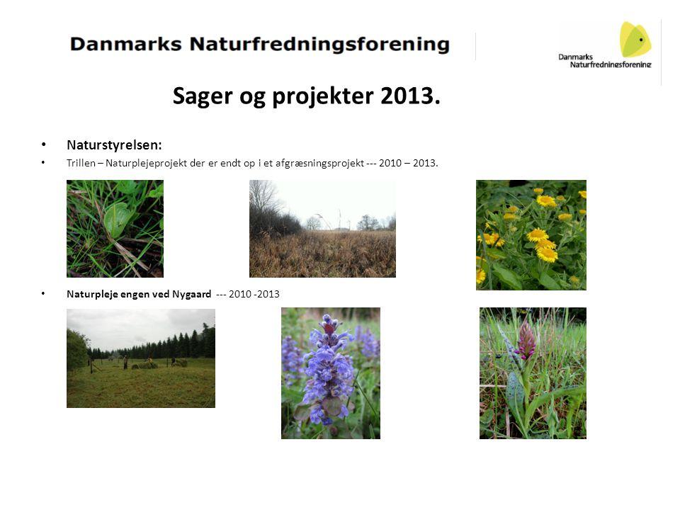 Sager og projekter 2013. Naturstyrelsen: