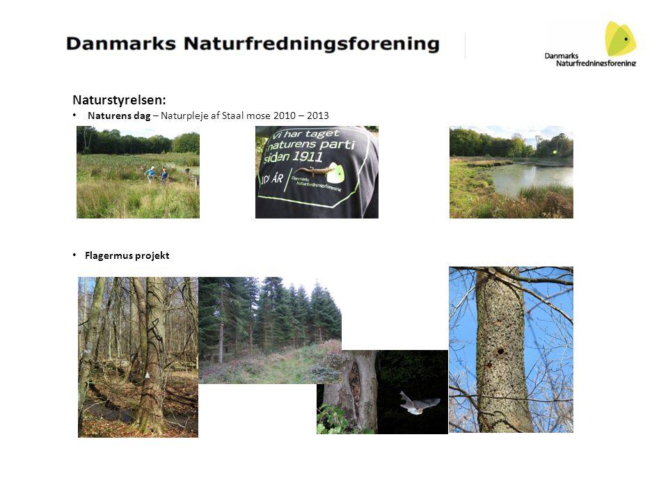 Naturstyrelsen: Naturens dag – Naturpleje af Staal mose 2010 – 2013
