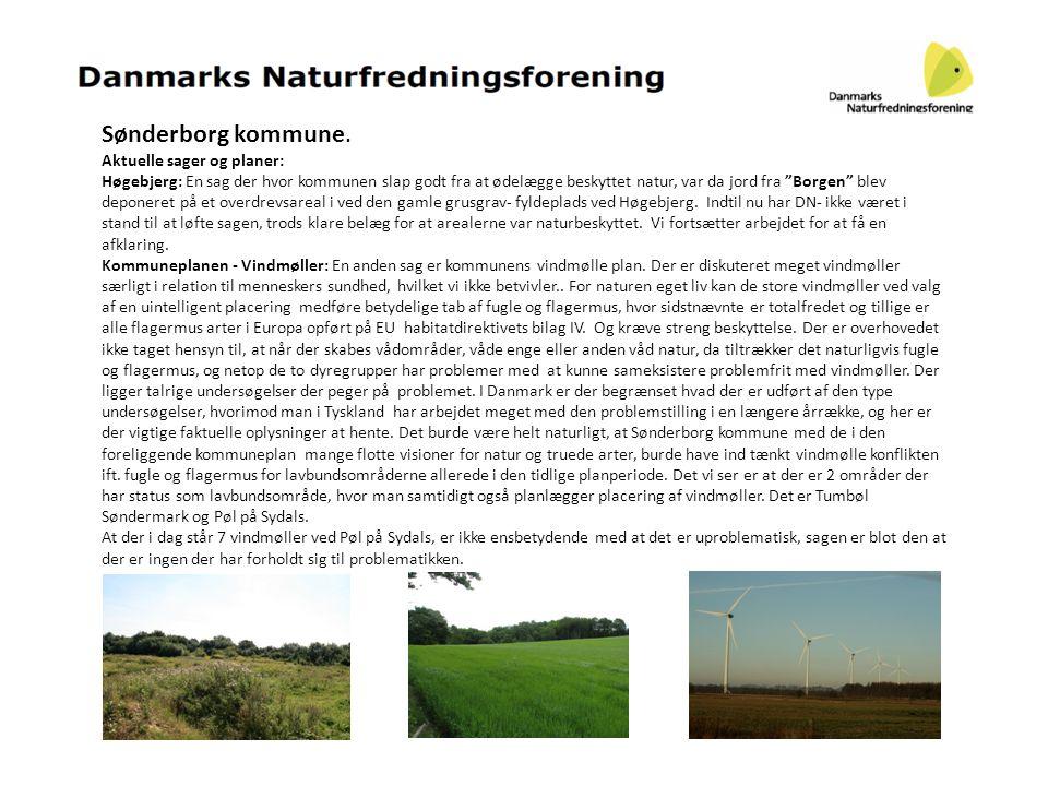 Sønderborg kommune. Aktuelle sager og planer: