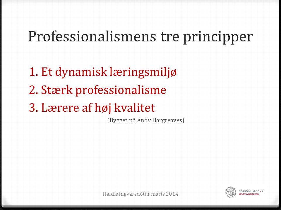 Professionalismens tre principper