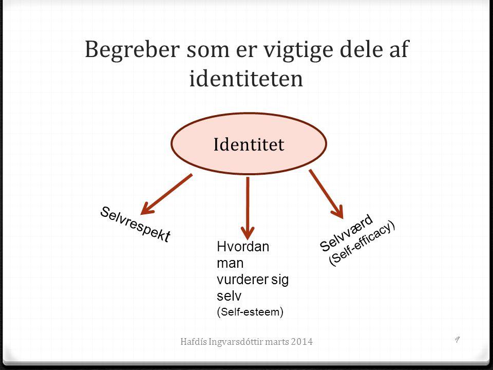 Begreber som er vigtige dele af identiteten