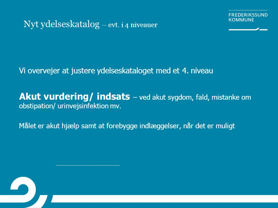 Nyt ydelseskatalog – evt. i 4 niveauer
