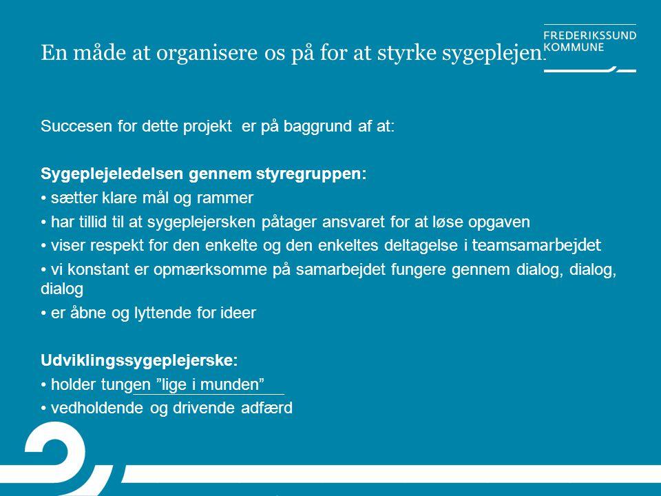 En måde at organisere os på for at styrke sygeplejen.
