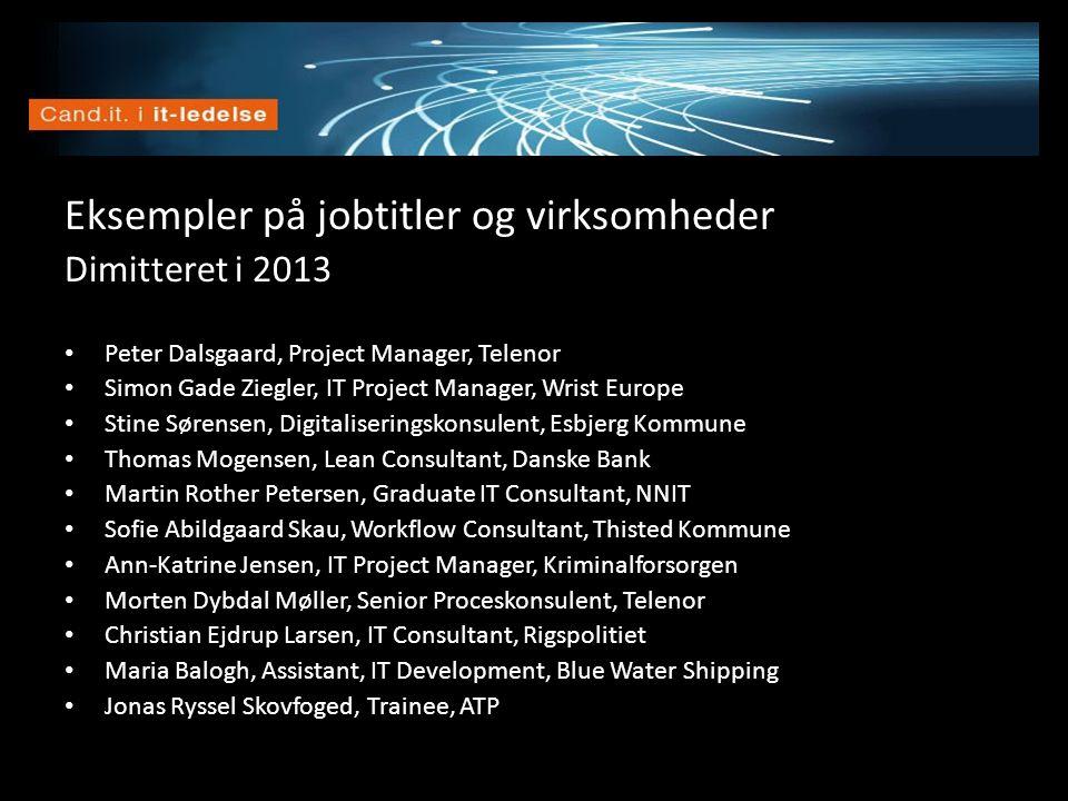 Vision Eksempler på jobtitler og virksomheder Dimitteret i 2013