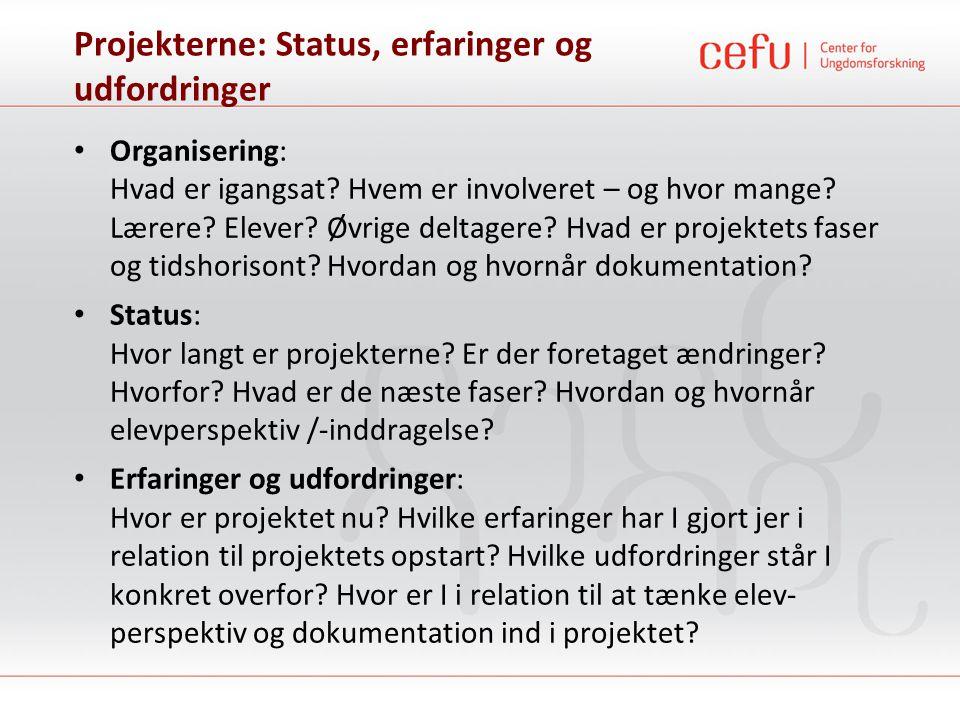 Projekterne: Status, erfaringer og udfordringer