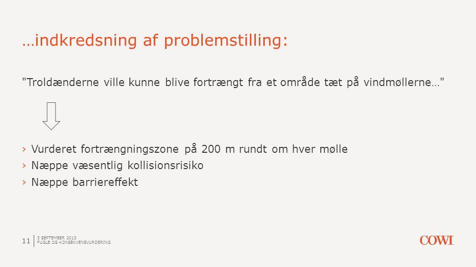 …indkredsning af problemstilling: