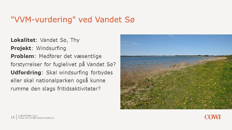 VVM-vurdering ved Vandet Sø