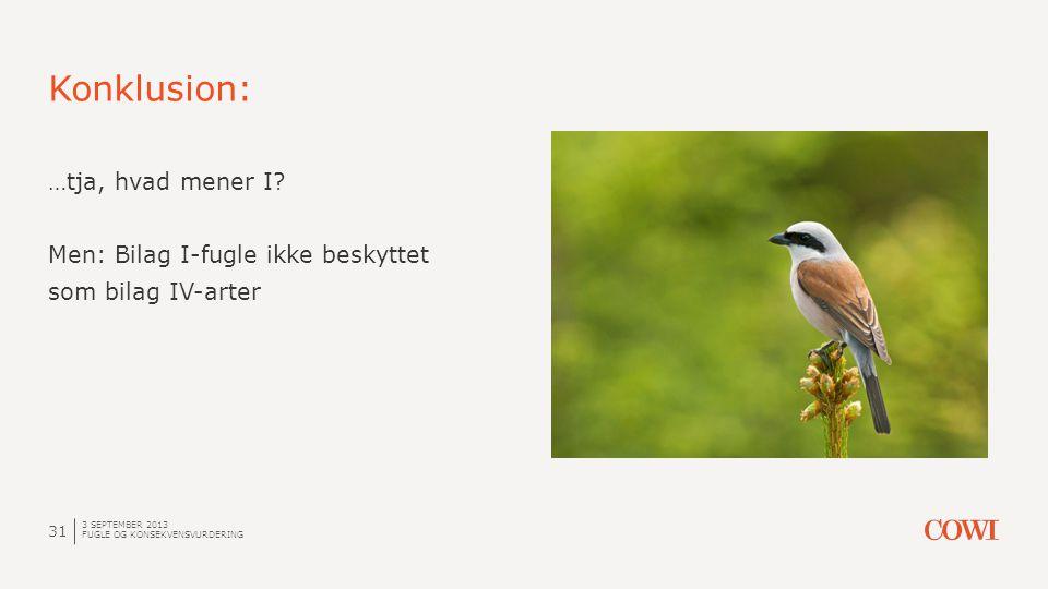 Konklusion: …tja, hvad mener I Men: Bilag I-fugle ikke beskyttet som bilag IV-arter 3 september 2013.