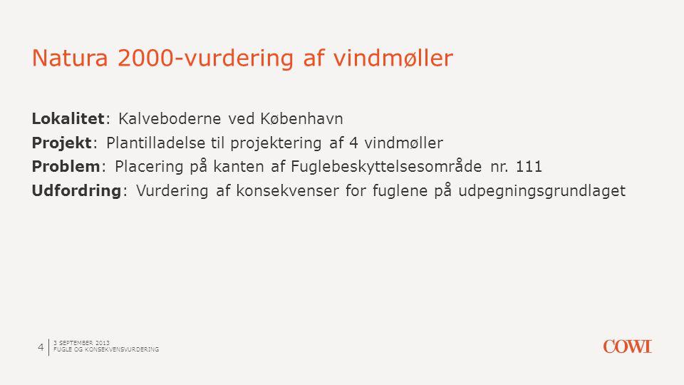Natura 2000-vurdering af vindmøller