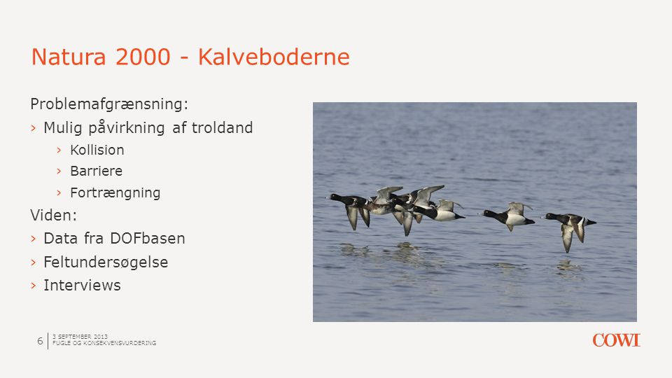 Natura 2000 - Kalveboderne Problemafgrænsning: