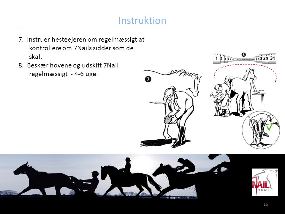 Instruktion 7. Instruer hesteejeren om regelmæssigt at kontrollere om 7Nails sidder som de skal.