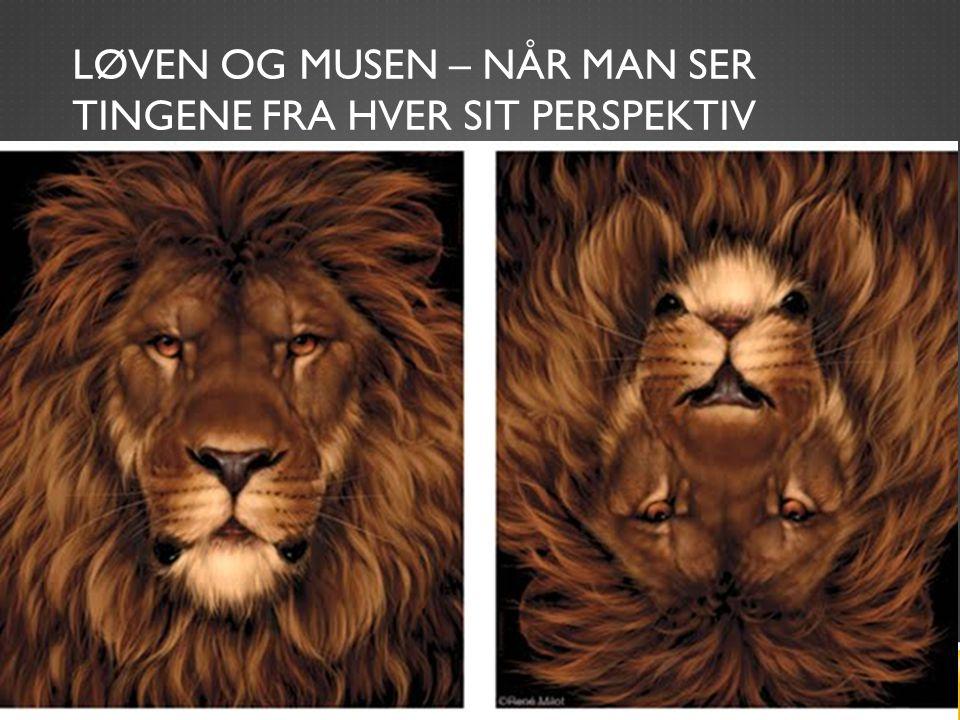 Løven og musen – når man ser tingene fra hver sit perspektiv