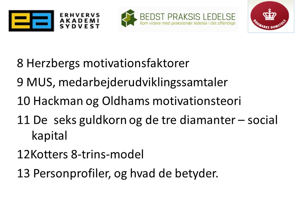 8 Herzbergs motivationsfaktorer