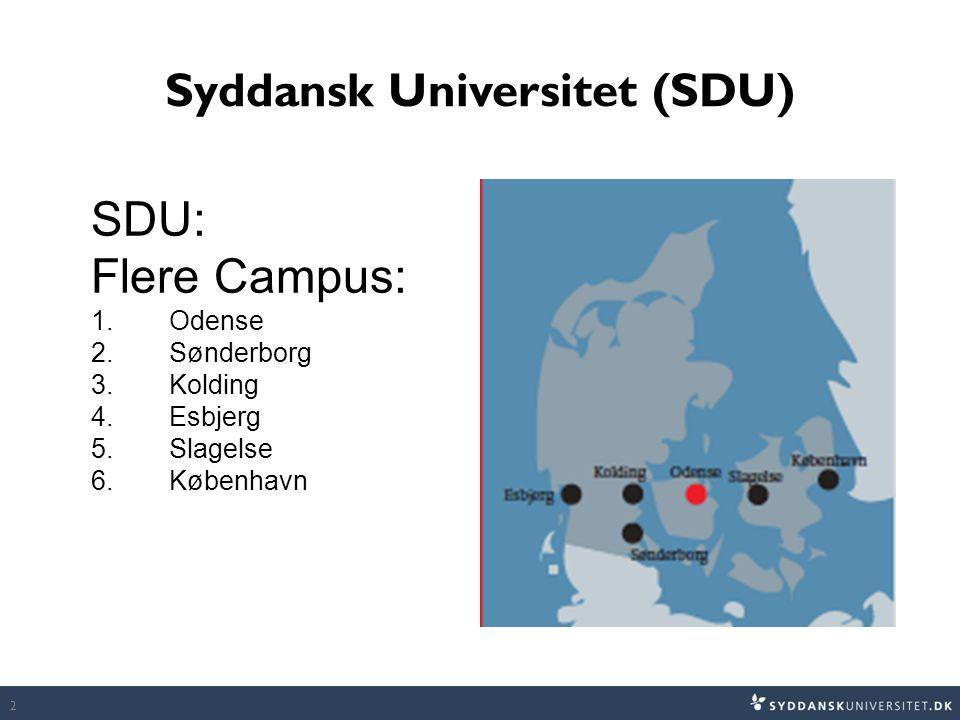Syddansk Universitet (SDU)