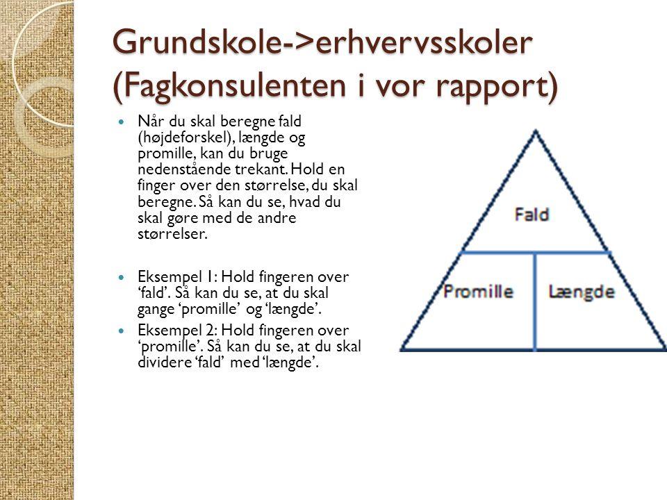 Grundskole->erhvervsskoler (Fagkonsulenten i vor rapport)