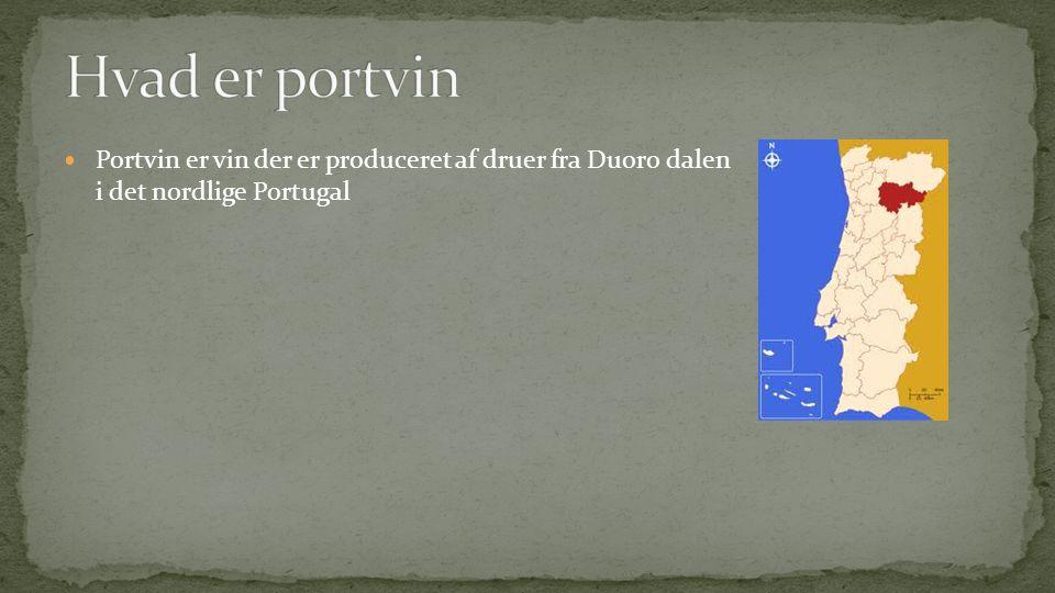Hvad er portvin Portvin er vin der er produceret af druer fra Duoro dalen i det nordlige Portugal