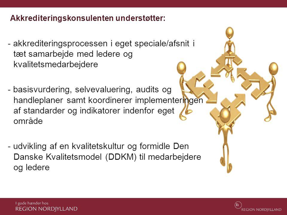 Akkrediteringskonsulenten understøtter: