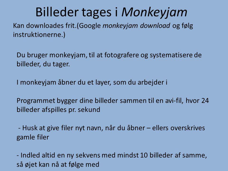 Billeder tages i Monkeyjam