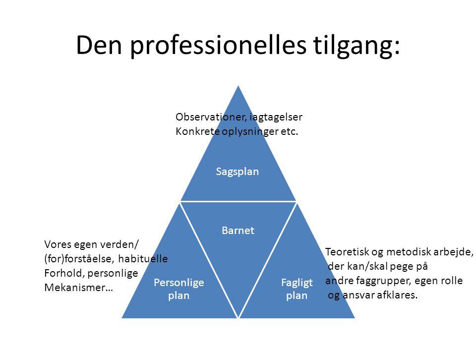 Den professionelles tilgang:
