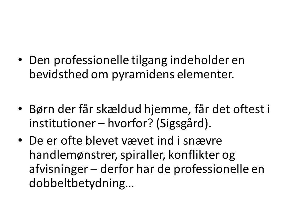 Den professionelle tilgang indeholder en bevidsthed om pyramidens elementer.