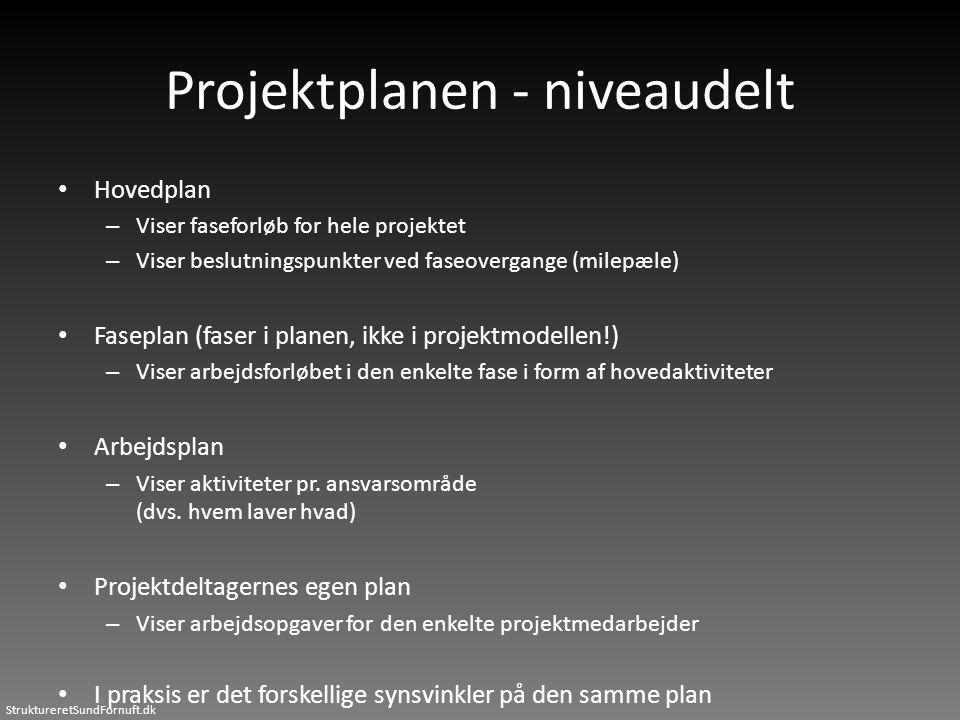 Projektplanen - niveaudelt
