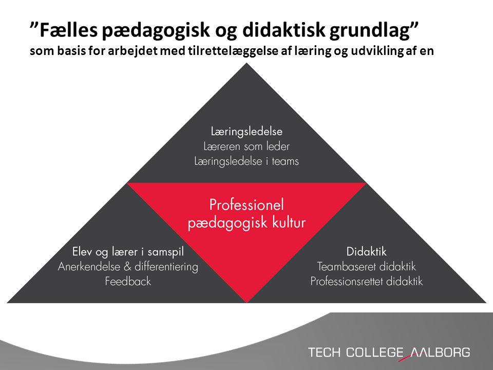 Fælles pædagogisk og didaktisk grundlag som basis for arbejdet med tilrettelæggelse af læring og udvikling af en anderledes læringsuge
