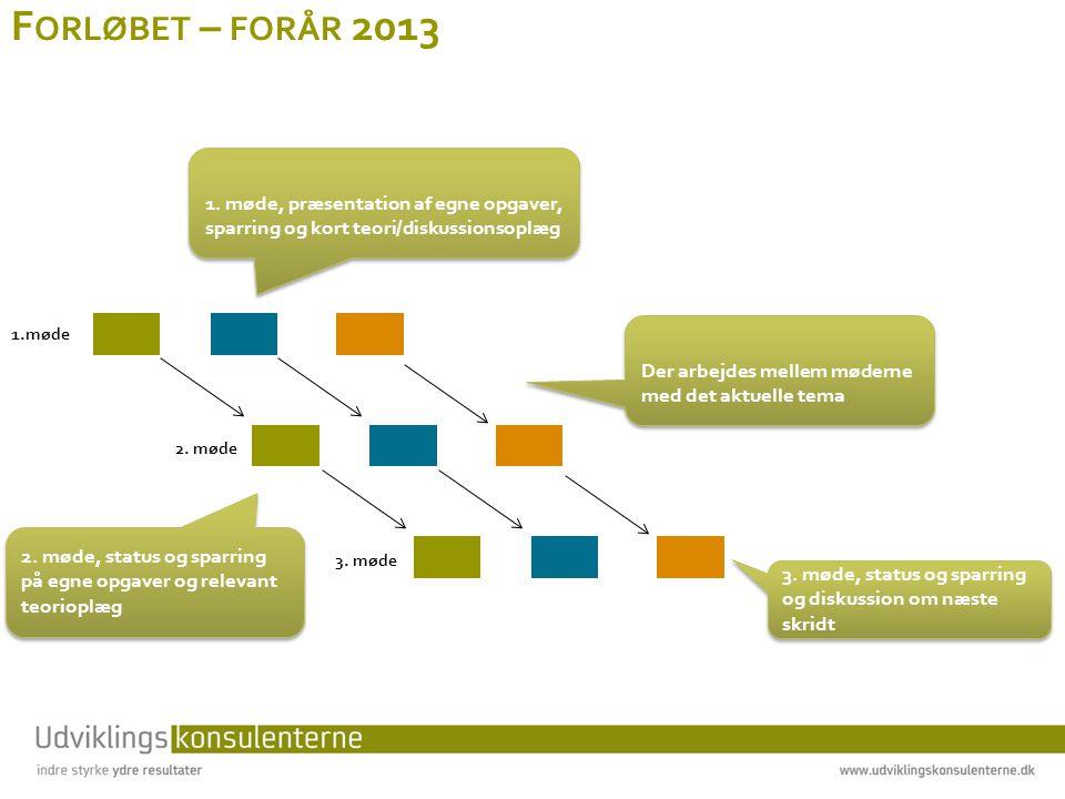 Forløbet – forår 2013 1. møde, præsentation af egne opgaver, sparring og kort teori/diskussionsoplæg.
