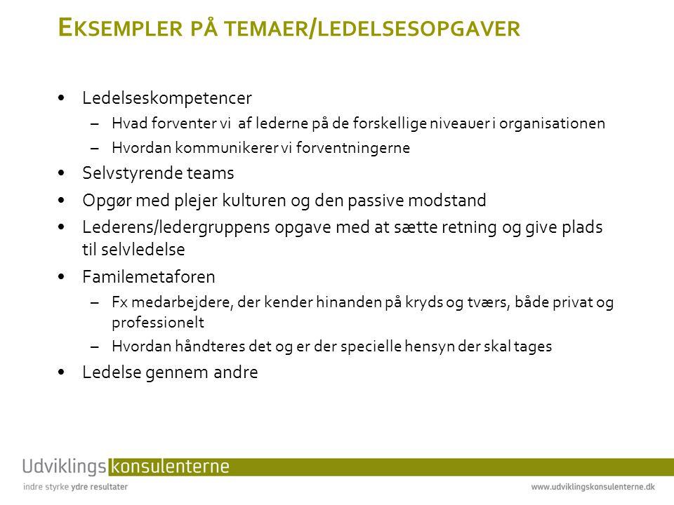 Eksempler på temaer/ledelsesopgaver