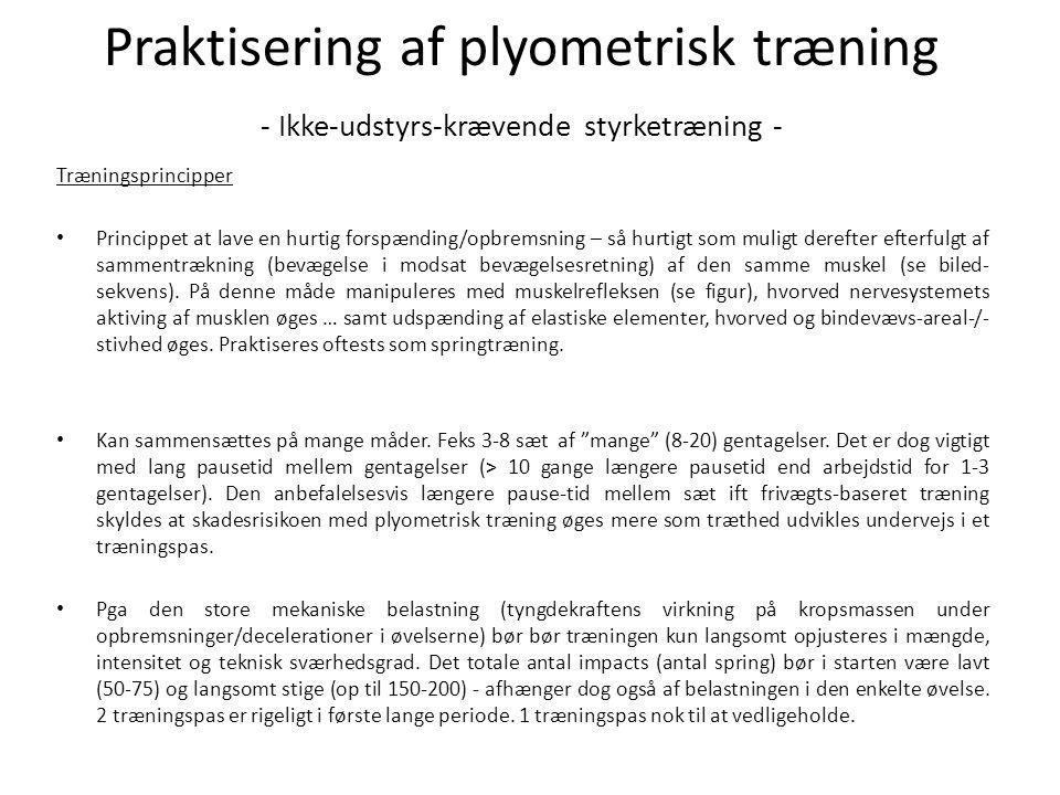 Praktisering af plyometrisk træning - Ikke-udstyrs-krævende styrketræning -