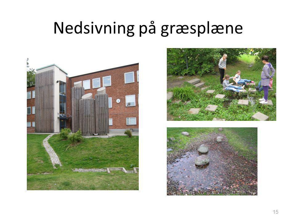 Nedsivning på græsplæne