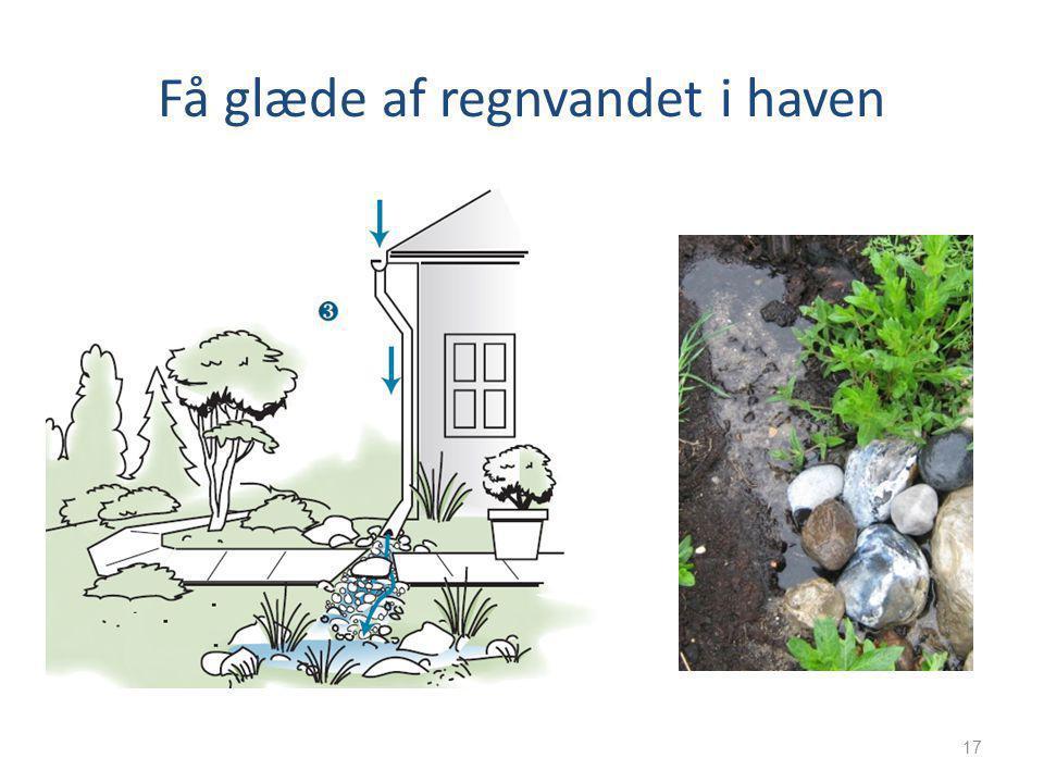 Få glæde af regnvandet i haven