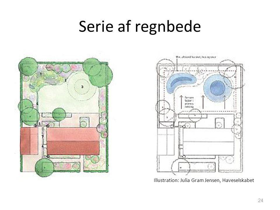 Serie af regnbede Illustration: Julia Gram Jensen, Haveselskabet
