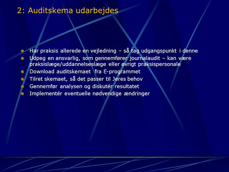 2: Auditskema udarbejdes