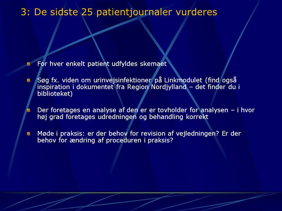 3: De sidste 25 patientjournaler vurderes