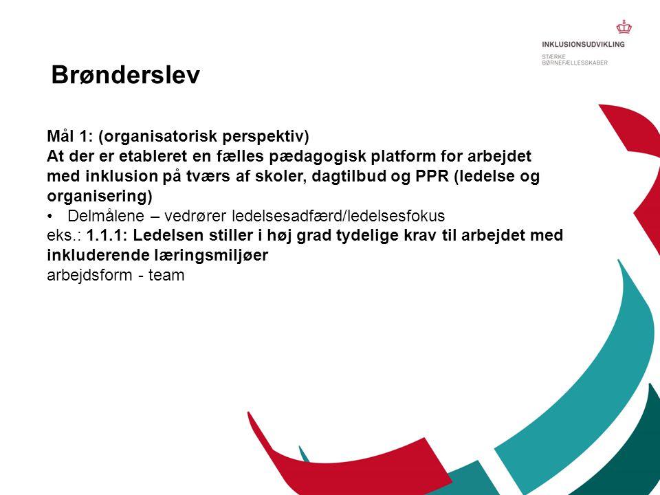 Brønderslev Mål 1: (organisatorisk perspektiv)