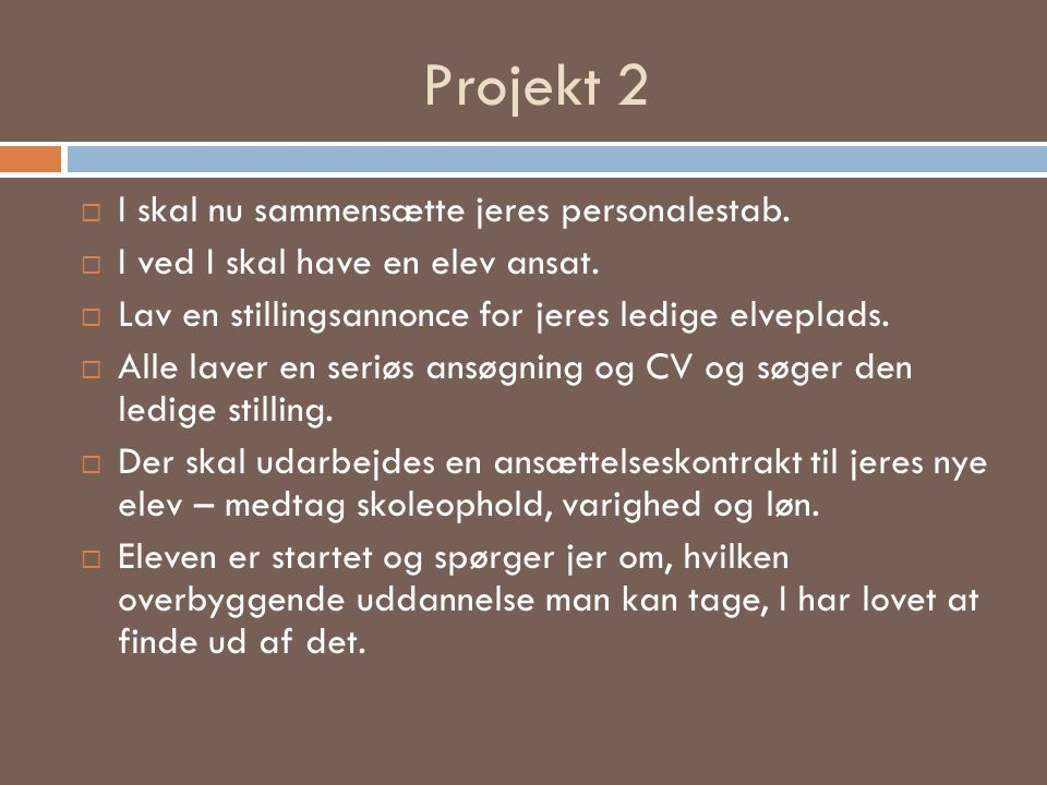 Projekt 2 I skal nu sammensætte jeres personalestab.
