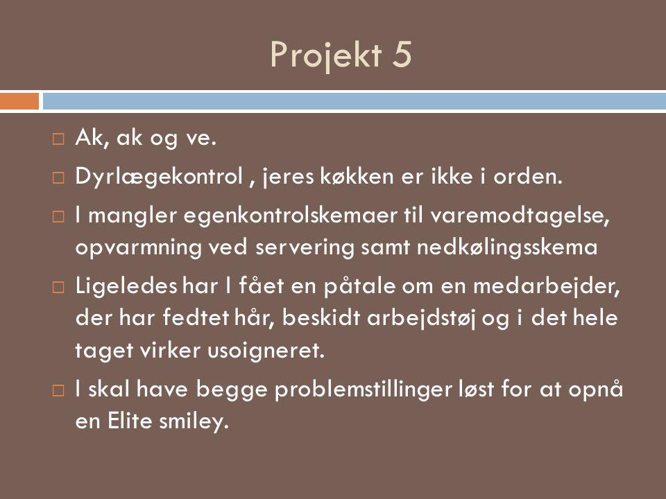 Projekt 5 Ak, ak og ve. Dyrlægekontrol , jeres køkken er ikke i orden.