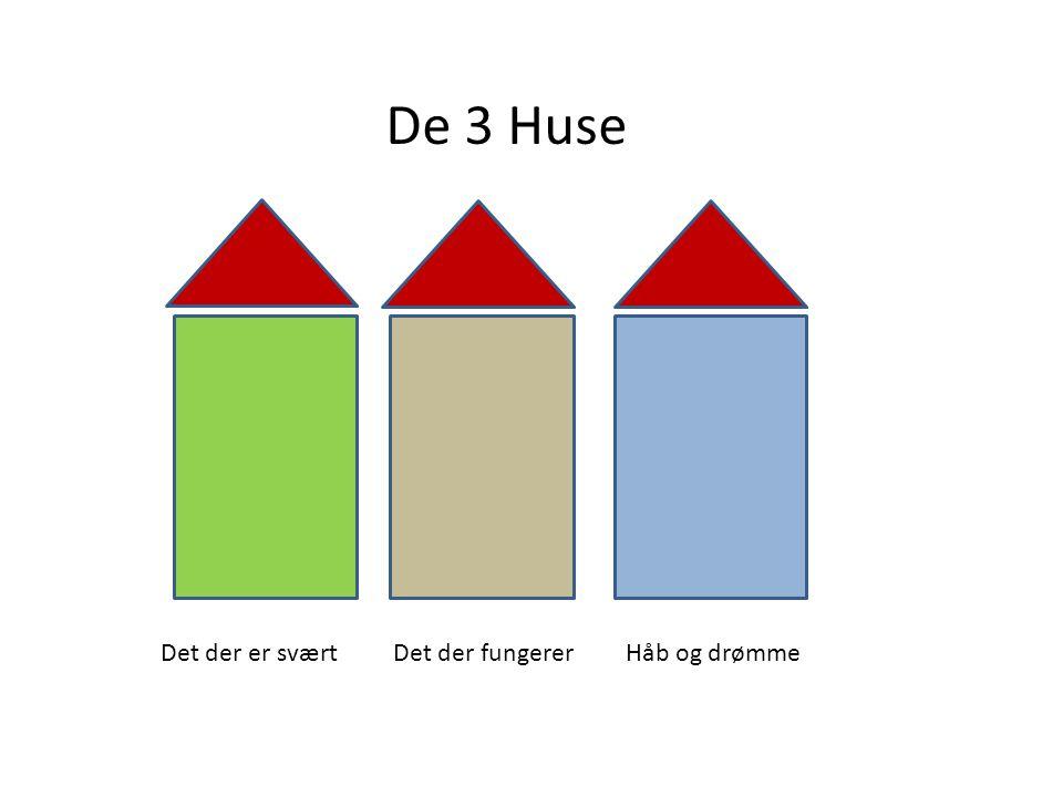 De 3 Huse Det der er svært Det der fungerer Håb og drømme
