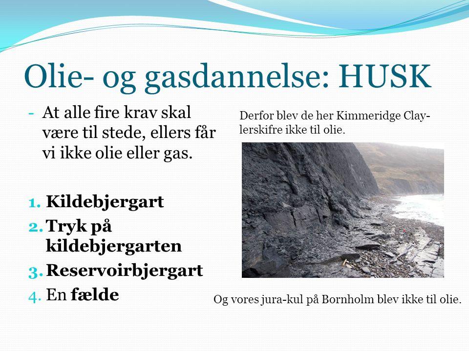 Olie- og gasdannelse: HUSK