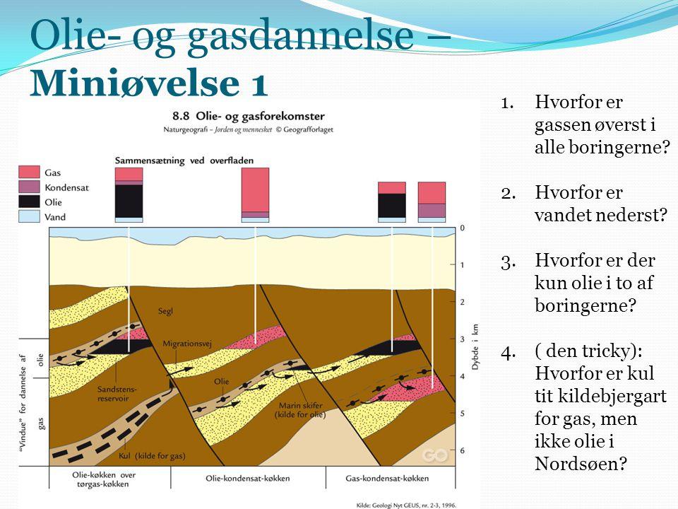 Olie- og gasdannelse – Miniøvelse 1