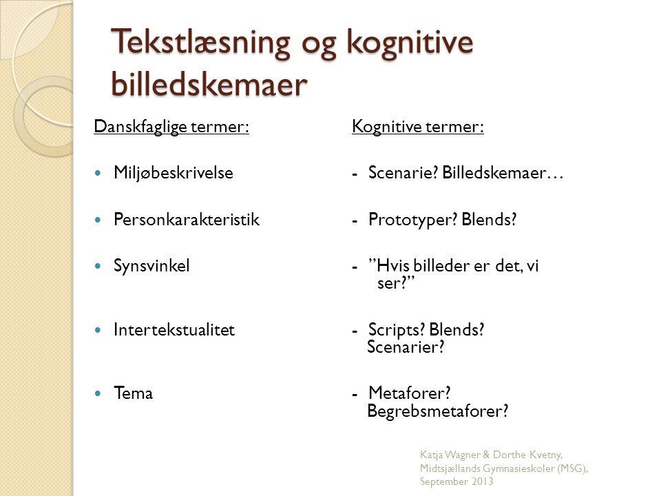 Tekstlæsning og kognitive billedskemaer