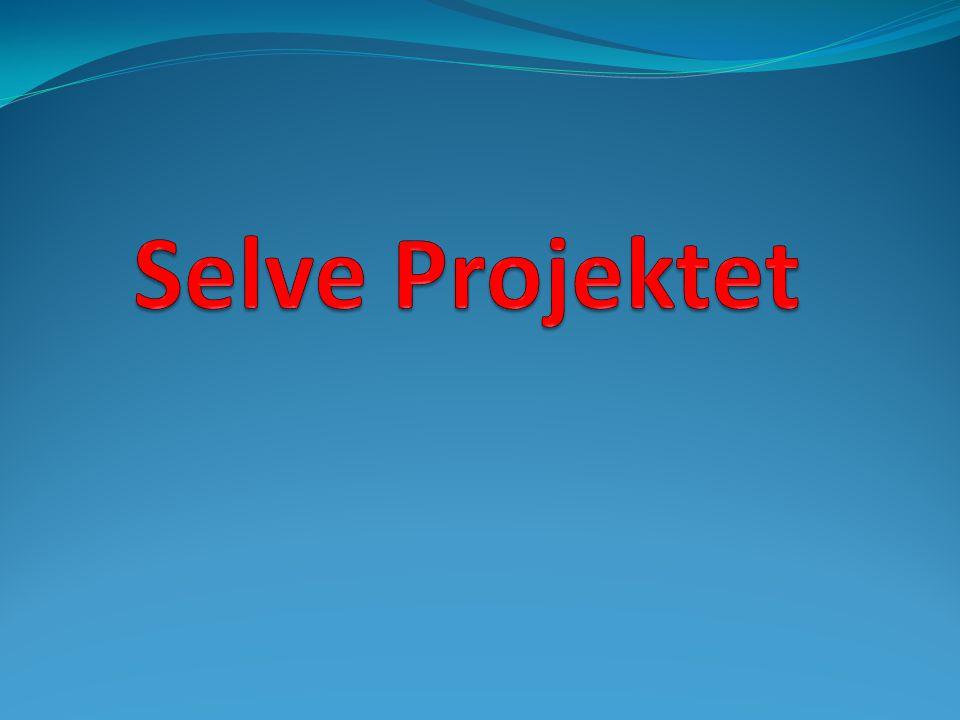 Selve Projektet