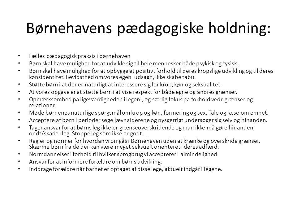 Børnehavens pædagogiske holdning: