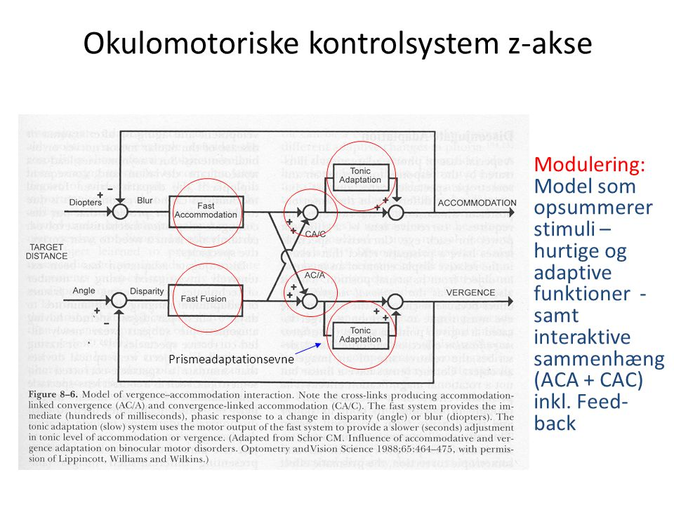 Okulomotoriske kontrolsystem z-akse