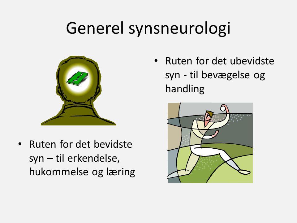 Generel synsneurologi