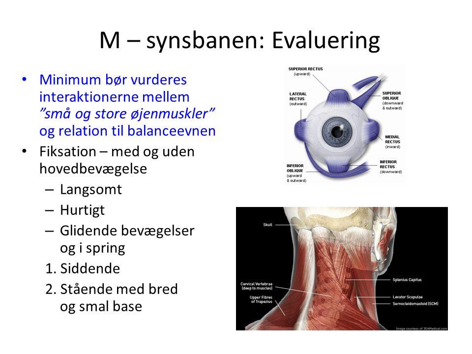 M – synsbanen: Evaluering