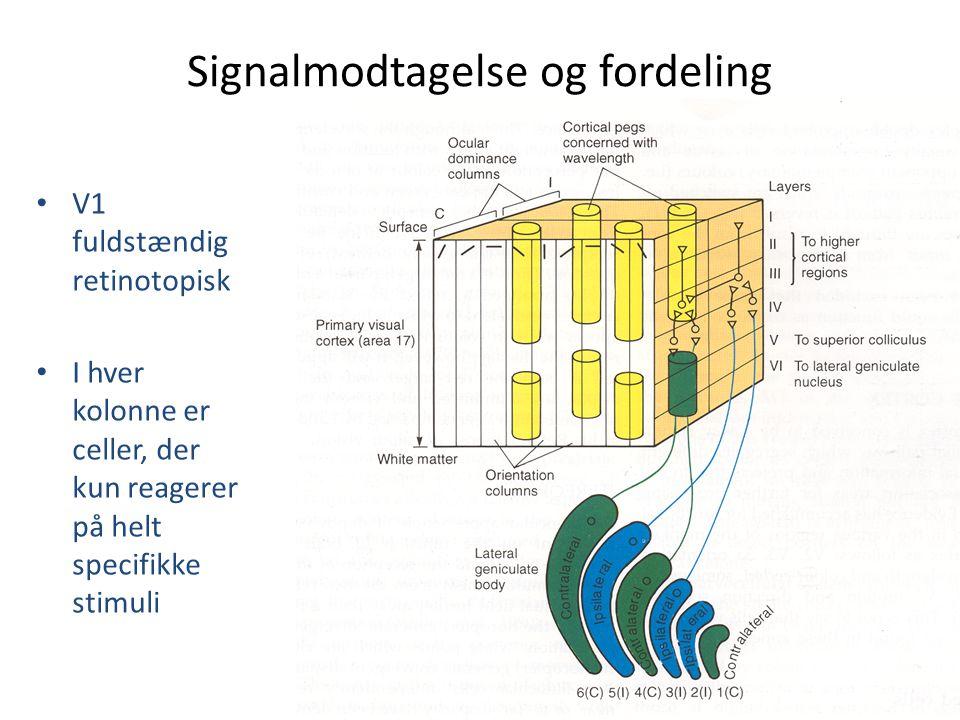 Signalmodtagelse og fordeling
