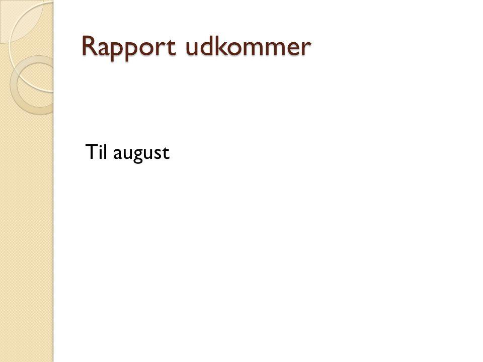 Rapport udkommer Til august
